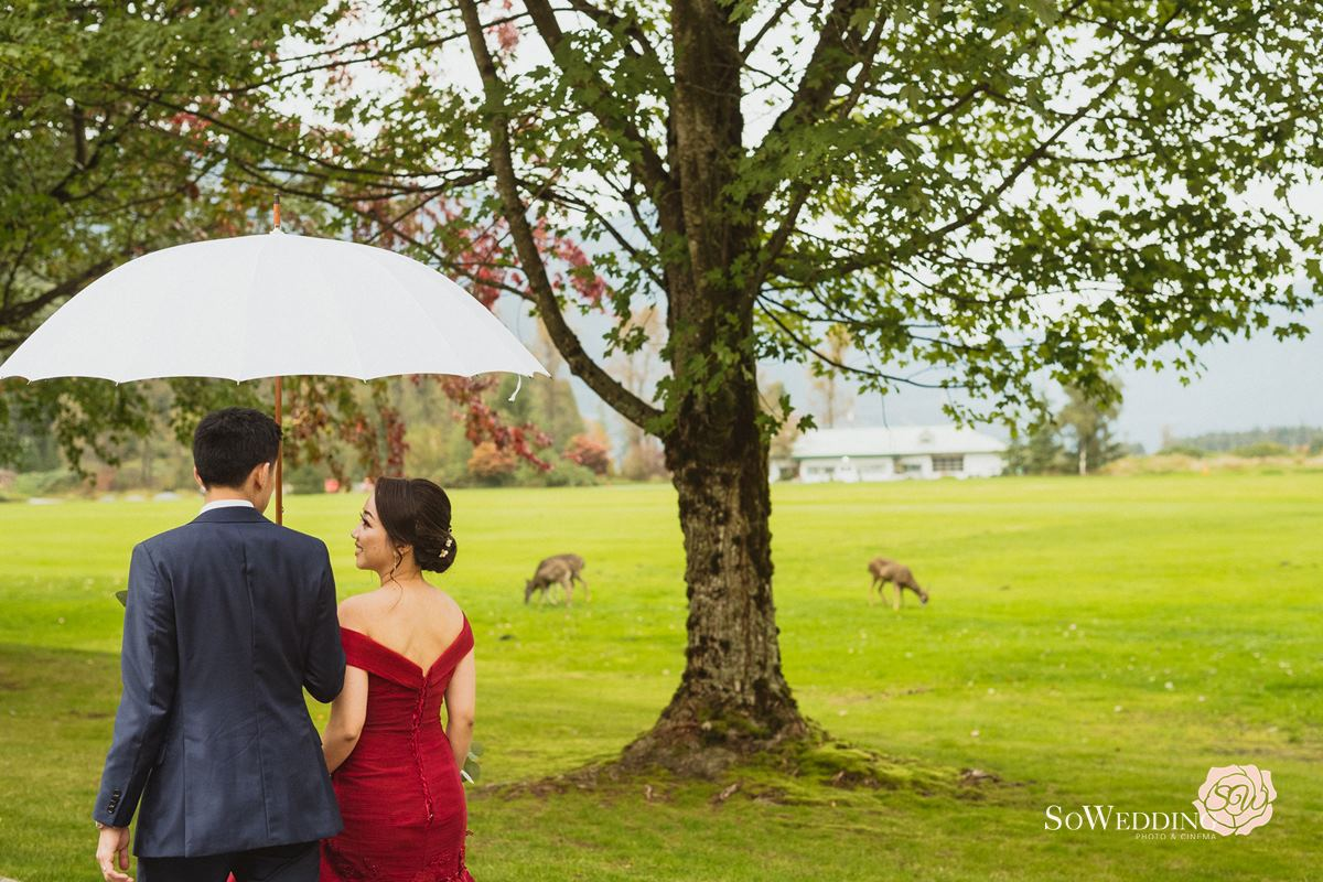 Swan E Set Wedding Photography